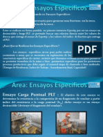 Ensayos Especificos.pptx
