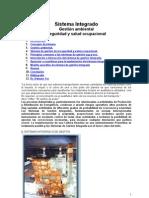 Sistema Integrado.doc