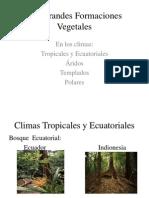 Las Grandes Formaciones Vegetales.pptx