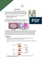 Farmacologia - Resumo Completo Cardio-Respiratório