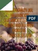 Maximizacion de los ingresos de Agrosur