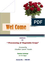 Processing of Veg Crops