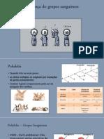 Biologia-Genética aula 4 - grupos sanguíneos