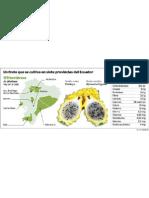 Pitahaya-fruta ECMFIL20120218 0001