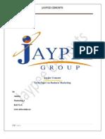 Term Paper Jaypee Cements