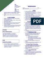 observador Brigada.pdf