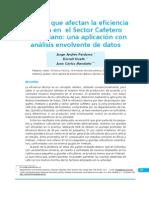 4.FactoresafectaneficienciatécnicaSectorcafeterocolombiano