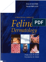 A Practical Guide to Feline Dermatology
