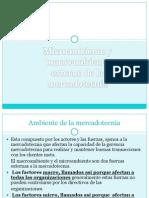 Exposicion de Mercadotecniamacro y Micro
