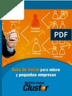 GUIA DE INICIO PARA MICRO Y PEQUEÑAS EMPRESAS