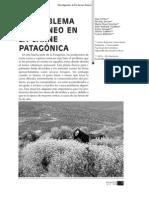 Revista Presencia, Nº 52, 2008
