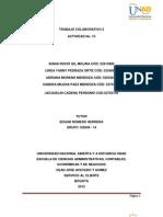 Act. 10 Trabajo Colaborativo 2 102609 14