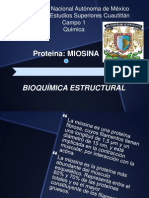 Miosina .pptx