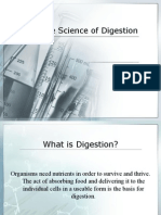The Science of Digestion