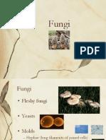 113 Fungi Chapter 31