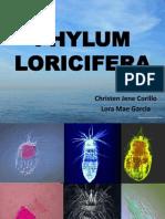 Loricifera