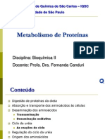 Metabolismo-de-proteínas
