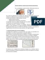 Fundamentos del análisis genético y molecular de procesos biológicos T2