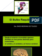 Bulbo Raquideo - Dra. Enoe Medrano