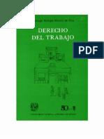 Barajas Montes de Oca, Santiago - Derecho Del Trabajo