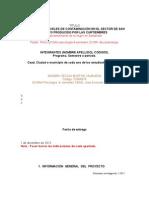 Trabajo Final Evaluacion Seminario de Investigacion 2012-1