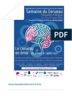 DOSSIER DEPRESSE semaine du cerveau Marseille (1).pdf