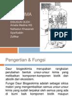 Kelompok 4 - Daur Biogeokimia