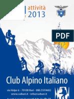 CAI 2013-web.pdf