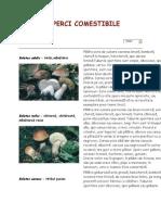 ciuperci comestibile detalii 1