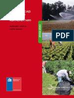 Competencias Laborales en El Sector Agroalimentario 2002 2010