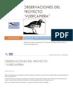 Dossier Observaciones Vuercapiera.pdf