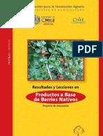 Productos a Base de Berries Nativos