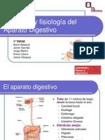 Presentación Anatomía del Sistema Digestivo.ppt