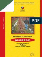 arandanos_2