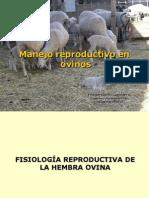 presentacion manejo reproductivo en ovinos.pdf