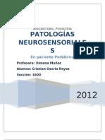 SORDERAS NEUROSENSORIALES NO SINDRÓMICAS