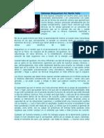 Sistemas Bioquantum Por Martín Peña