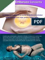 Embarazo Consciente 2012