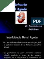 Insuficiencia Renal Aguda e Insuficiencia Renal Cronica