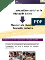 111239263 5 Educacion Especial