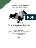 Gu�a Como estudiar una via metabolica 2013.pdf