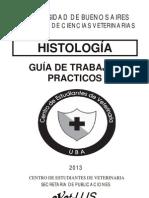 Gu�a TP 2013.pdf