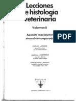 Lecciones de Histolog�a 8. Aparato reproductor Masculino comparado.pdf