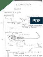 resumen embrio.pdf