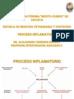 Proceso Inflamatorio
