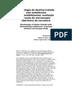 Morfologia da dentina tratada com substâncias dessensibilizantes