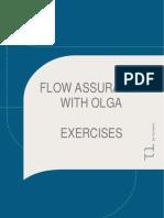 FA With OLGA Exercises_