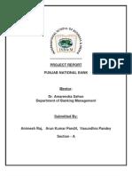 PNB Report