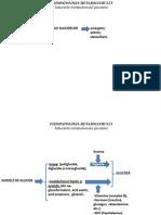 Tulburari ale metabolismului glucidic
