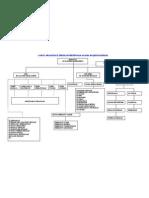 Carta Organisasi (4)